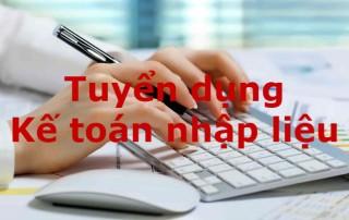 Tuyển dụng kế toán nhập liệu - Công ty Dịch vụ kế toán Tầm Nhìn Việt